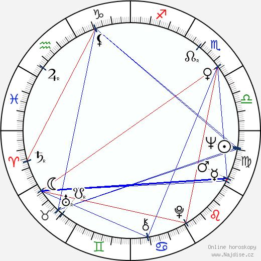 Jindřich Sejk wikipedie wiki 2019, 2020 horoskop