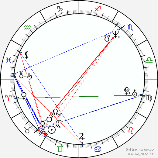 Pavel Jungwirth wikipedie wiki 2020, 2021 horoskop