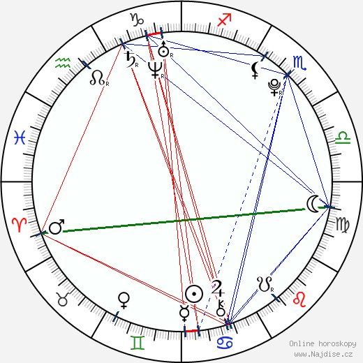 Soulja Boy wikipedie wiki 2018, 2019 horoskop