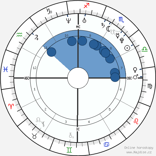 Casey Stoner wikipedie, horoscope, astrology, instagram
