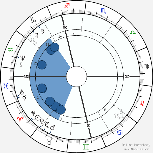 Paul Splingaerd wikipedie, horoscope, astrology, instagram