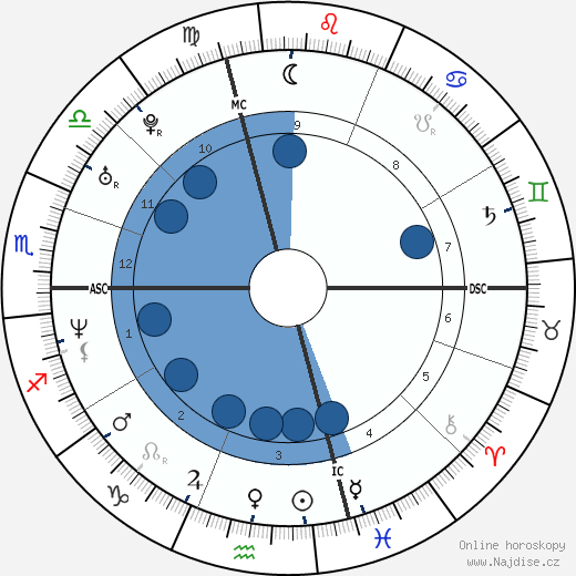 Raphael Ibanez wikipedie, horoscope, astrology, instagram